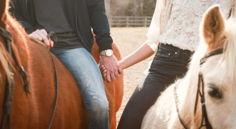 man and woman riding horses while holding hands during day